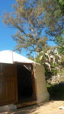 Outside Yurt: Secret Garden Retreat